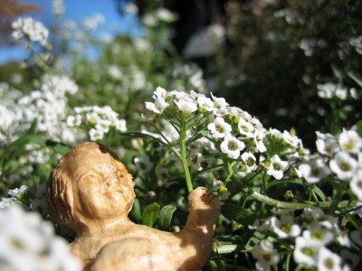 Baby J chillaxin' in the flowers